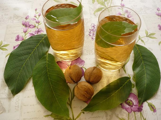 Травы при панкреатите поджелудочной железы: какие пить? Лечебные травы