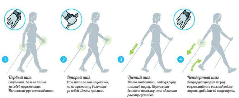 Скандинавская ходьба как правильно ходить и сколько