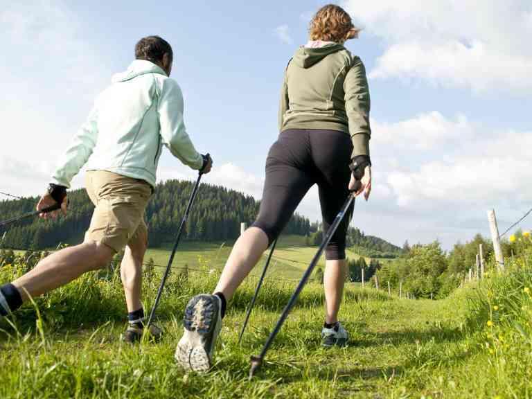 Палки для скандинавской ходьбы, как выбрать