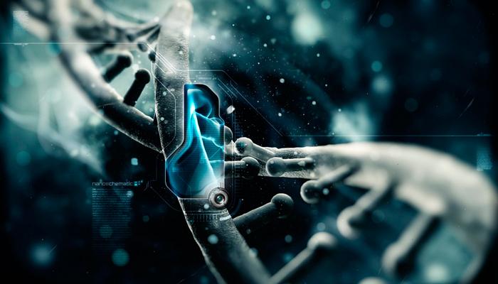 Что такое онкогенные вирусы папилломы человека
