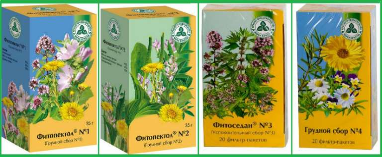 Эффективное средство от кашля для детей, отвары из трав и не только