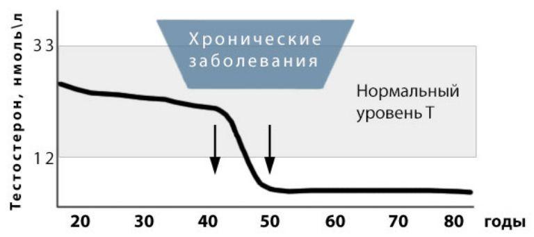 Климакс у мужчин симптомы возраст лечение
