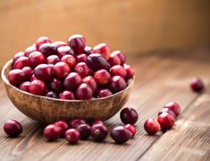 Клюква с ягодами Годжи