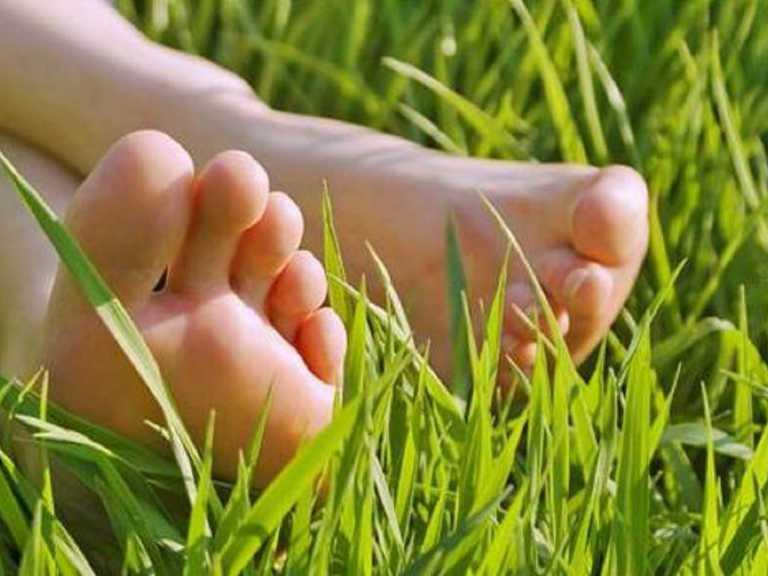 Грибок ногтей, лечение народными средствами в домашних условиях
