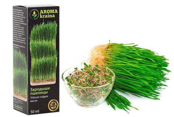 Как применять масло зародышей пшеницы
