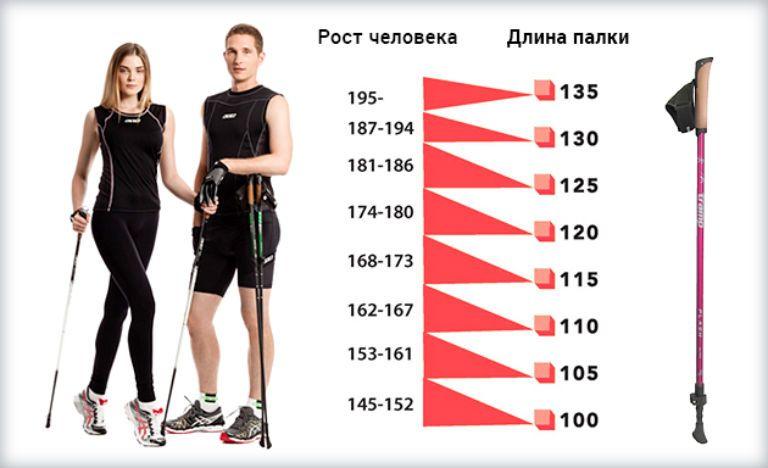 Как подобрать палки для скандинавской ходьбы по росту, таблица
