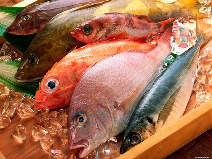 Какую рыбу можно при панкреатите поджелудочной железы? Как приготовить? Рецепты