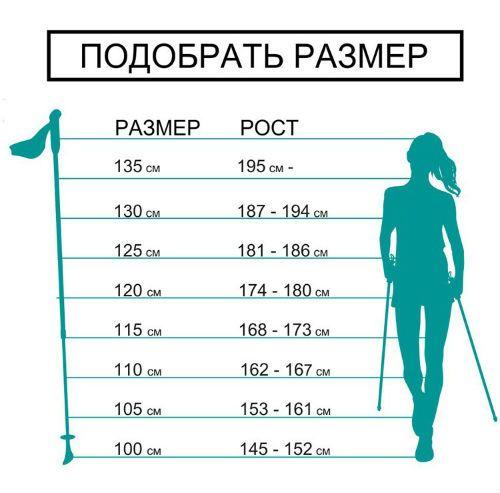 Какие должны быть палки для скандинавской ходьбы