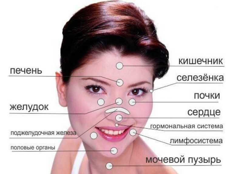 Прыщи на лице, за какие органы отвечают у женщин и мужчин