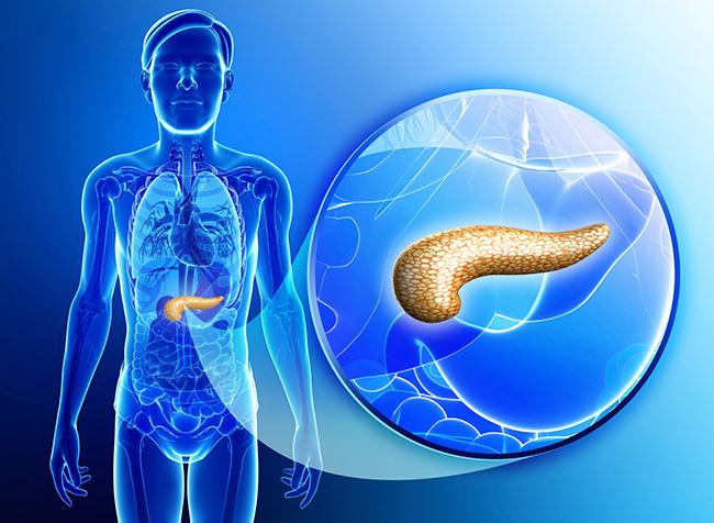 Дифференциальная и лабораторная диагностика панкреатита поджелудочной железы
