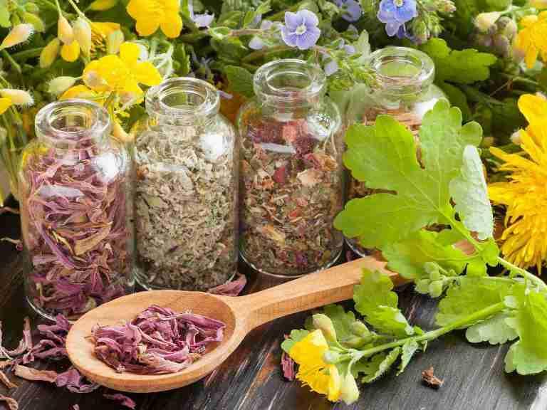 Как лечить поджелудочную железу народными средствами, рецепты