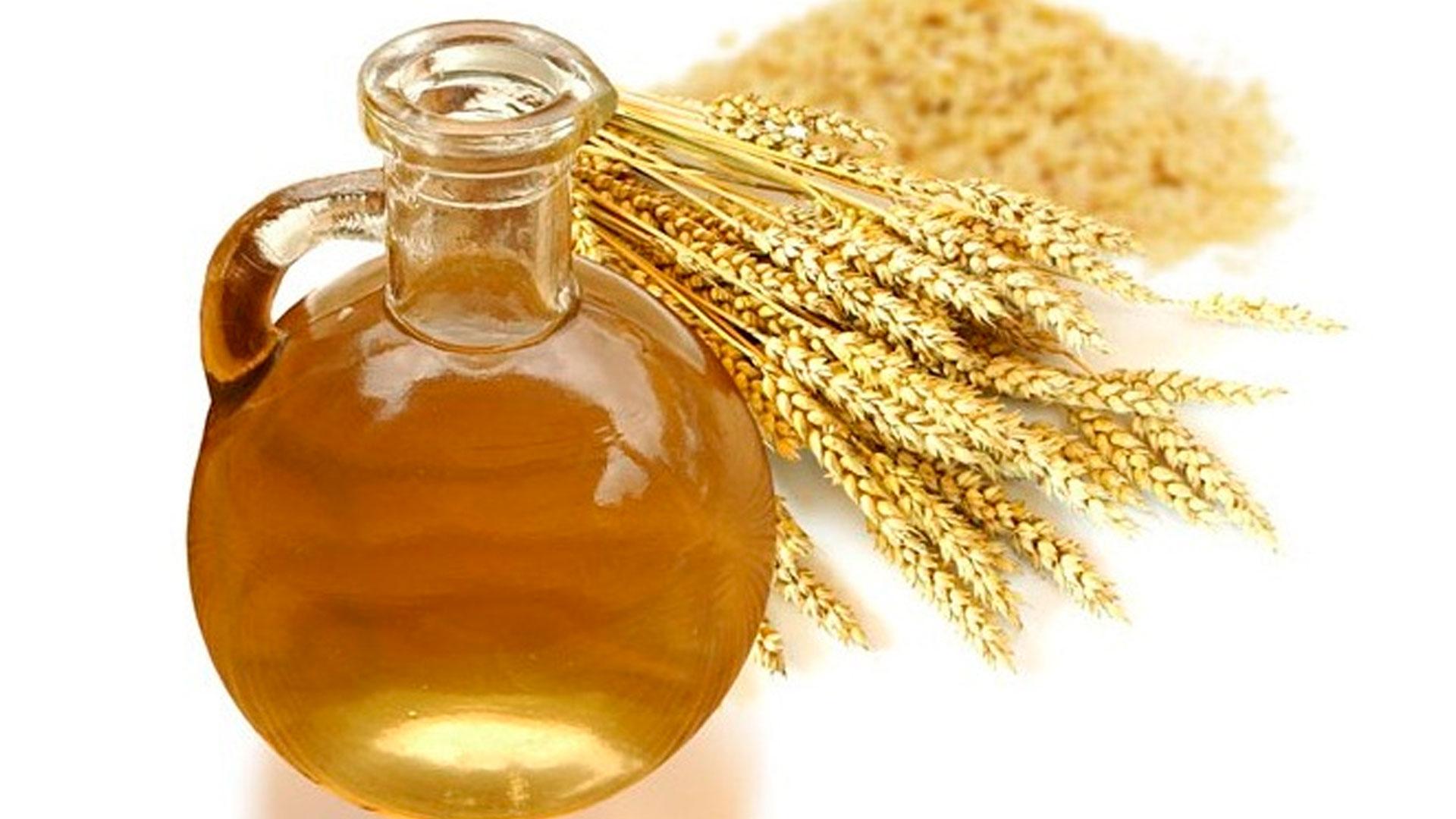 Полезные свойства масла ростков пшеницы для волос