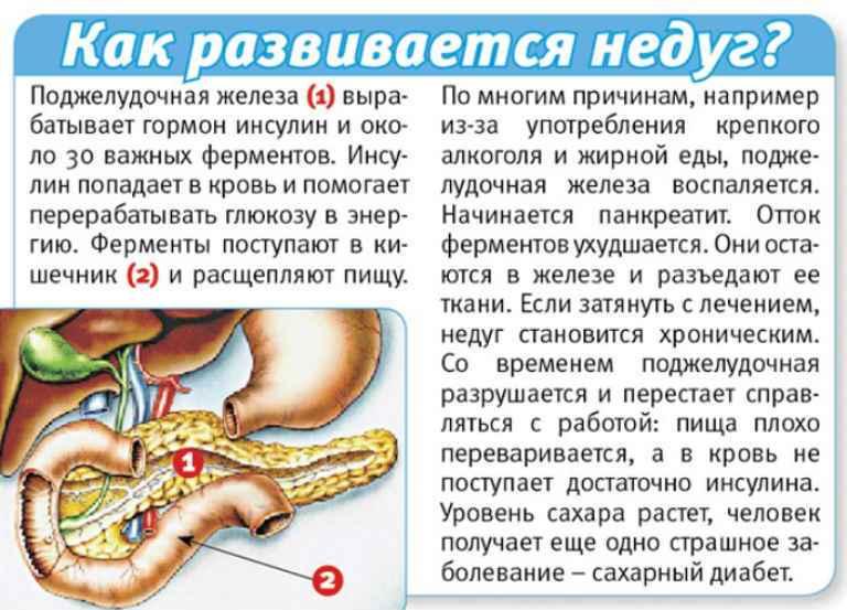 Панкреатит что это за болезнь и как ее лечить