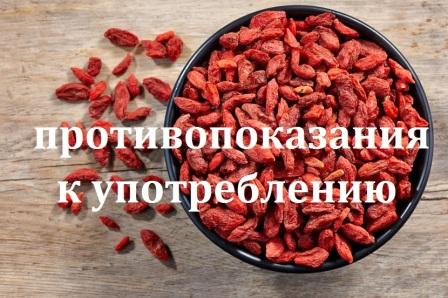 ягоды Годжи: противопоказания