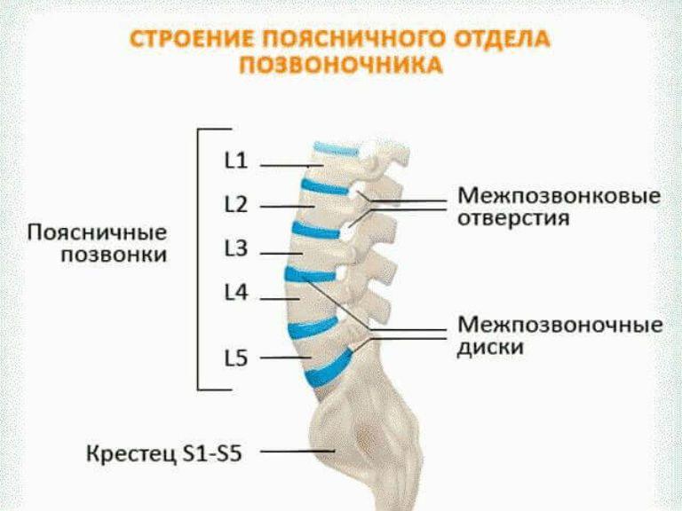 Остеохондроз поясничного отдела симптомы и лечение