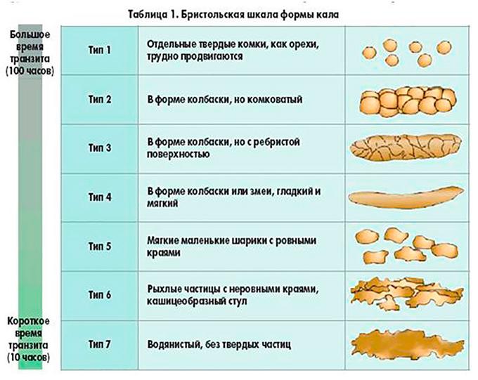 Какой кал при панкреатите? Слизь, кровь, цвет