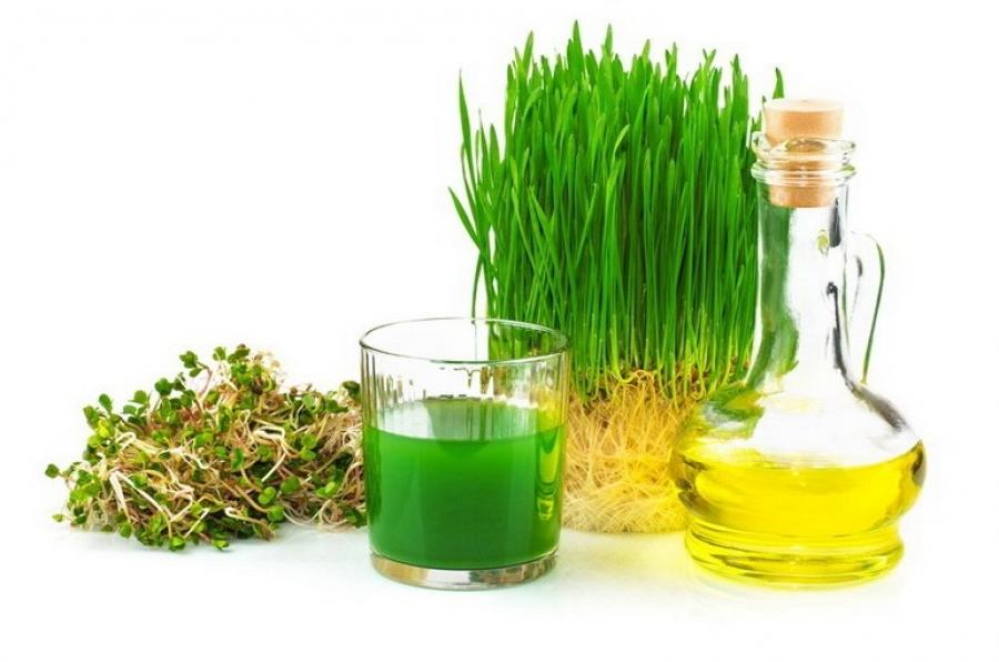 Состав масла зародышей пшеницы