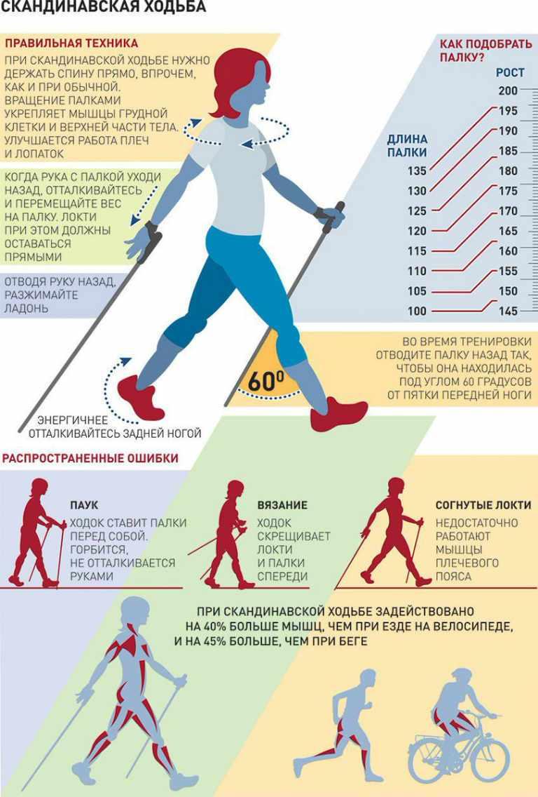 Скандинавская ходьба с палками, техника ходьбы для пожилых